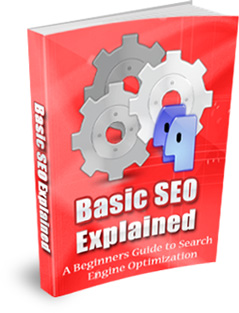 Product picture Basic Search Engine Optimization (SEO) Explained (MRR)